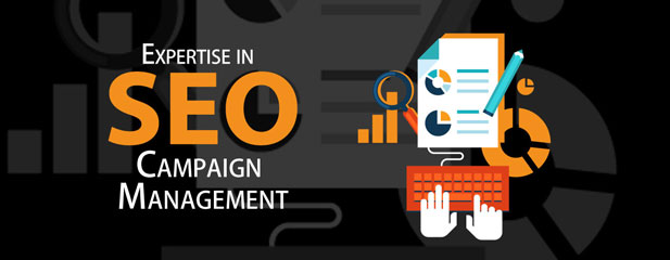 Highly Advanced SEO Management